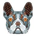 French Bulldog Head Zentangle ...