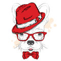 French Bulldog vector. Cartoon puppy. A dog in a hat and sunglasses. Cute puppy. Royalty Free Stock Photo