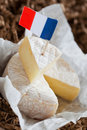 French cheese Stock Images
