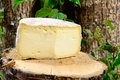 French cheeses savoie on a piece of wood Royalty Free Stock Images