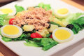 French classic nicoise salad on a plate Stock Photos