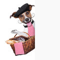 French dog with picnic basket behind placard Stock Photo