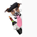 French dog with red wine and behind placard Royalty Free Stock Image