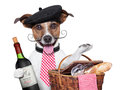 French dog with red wine and picnic basket Stock Image
