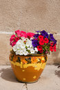 French flower pot Royalty Free Stock Photo