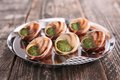 French gastronomy escargot on wood Stock Photography