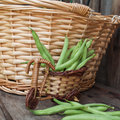 French green beans on a wooden table Stock Photos
