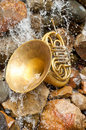French Horn Instrument Stock Photography