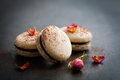 French macaroons with chocolate filling and cocoa powder Royalty Free Stock Photography