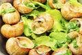 French snail dish Royalty Free Stock Photo