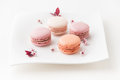 French sweet delicacy, macaroons cookies