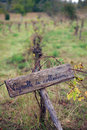 French vineyard old and rustic sign in a with engraving saying collectable Royalty Free Stock Images