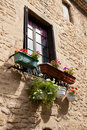 French window with flowers Royalty Free Stock Photo