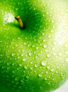 Fresh apple Stock Photography