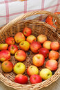 Fresh apples in a basket Stock Photography