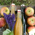 Fresh apples and juice on wooden ground Stock Photography