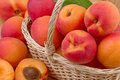Fresh apricot in wicker basket close up Stock Photography