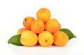 Fresh apricots isolated on white background Royalty Free Stock Photo