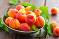 Fresh apricots with leaves Royalty Free Stock Photo