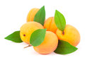 Fresh apricots with leaves on white background Royalty Free Stock Photo