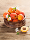 Fresh apricots on wooden plate selective focus Stock Photo