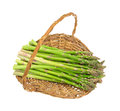 Fresh asparagus stalks in old wicker basket Royalty Free Stock Photo