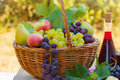 Fresh autumn fruits and red wine on a table Stock Image
