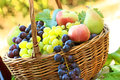 Fresh autumn fruits in wicker basket Stock Photography
