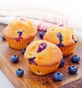 Fresh baked blueberry muffins Royalty Free Stock Photos