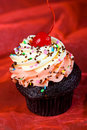 Fresh baked chocolate cupcake with a cherry on top Royalty Free Stock Photography