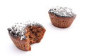 Fresh baked chocolate muffin with desiccated coconut closeup of cacao and isolated on white background Royalty Free Stock Image