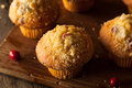 Fresh Baked Cranberry Muffins Royalty Free Stock Photo
