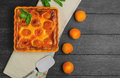 Fresh baked fruit pie tart with apricot