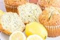 Fresh baked lemon poppyseed muffins adn lemons and poppyseeds Royalty Free Stock Image