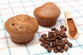 Fresh baked muffins coffee grains and powdery cinnamon closeup of on wooden spoon lying on colorful cloth Stock Image
