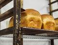 Fresh bakery bread Royalty Free Stock Photo