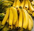 Fresh bananas at a farmers market Royalty Free Stock Photo