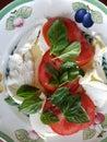 Fresh basil tomatoes and mozzarella cheese salad Royalty Free Stock Photo