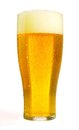 Fresh beer Stock Images