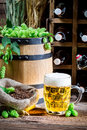Fresh beer and hoppy flavor on old wooden table Stock Photography