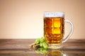 Fresh beer in a mug