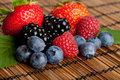 Fresh Berries Stock Image