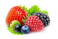Fresh berries isolated on white Stock Photography