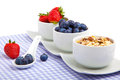 Fresh berries in porcelain bowls Royalty Free Stock Image