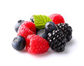 Fresh berries on a white background Royalty Free Stock Photography