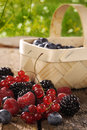 Fresh berries on a wooden table Stock Image