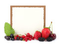 Fresh berry mix with banner Royalty Free Stock Photo