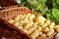 Fresh bio potatoes on farmer agricultural market Royalty Free Stock Photo