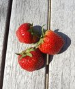 Fresh Biological Strawberries on wood, Still Life Royalty Free Stock Photo