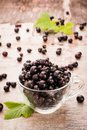 Fresh black currant in the cup and leaves Royalty Free Stock Photo